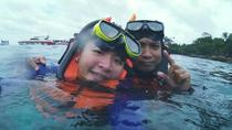 Coral and Racha Islands Speedboat Snorkeling Tour from Phuket , Phuket, Jet Boats & Speed Boats