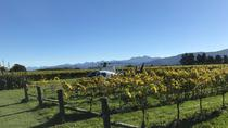 Marlborough Vineyard Discoverer, Nelson, Wine Tasting & Winery Tours