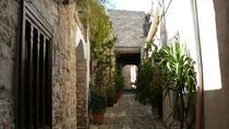 Lefkara lace, Unesco Choirokoitia and Larnaca birdwatching Tour, Ayia Napa, Cultural Tours