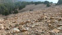 Top Cyprus Walking Trip (Troodos - Artemis trail and opt Caledonia Waterfalls), Nicosia, City Tours
