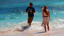 Private Customizable Island Sightseeing Tour in St Maarten, Philipsburg
