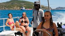 Shore Excursion: St Maarten Snorkeling Tour, Philipsburg, Ports of Call Tours