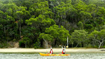 Kayak and Bushwalking Day Tour from the Gold Coast Including Currumbin Wildlife Sanctuary, Gold ...