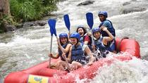Ubud White Water Rafting with Complimentary Lunch, Ubud, White Water Rafting