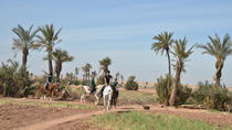 Tour giornaliero a cavallo e in quad da Marrakech, Marrakech