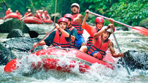 ELEPHANT RIDE AND WATER RAFTING, Kuta, 4WD, ATV & Off-Road Tours