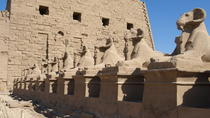 4-hour Private Luxor East Bank and Karnak Temple Tour, Luxor, Private Day Trips