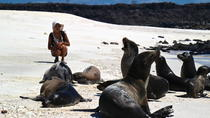 Galapagos Islands Land-Based Eco Adventure with Hiking and Snorkeling 5D/4N, Galapagos Islands, null