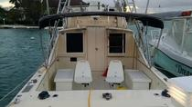 3 Hour Montego Bay Private Deep Drop Fishing Boat Rental Jamaica Inshore, Montego Bay, Boat Rental