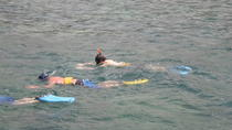Montego Bay Shore Excursion: Private Snorkel Tour, Montego Bay, Ports of Call Tours