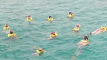 Ocho Rios Shore Excursion: Private Snorkel Tour, Ocho Rios, Ports of Call Tours