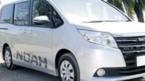 Treasure Beach Hotels Airport Transfers Montego Bay MBJ (Private Roundtrip), Montego Bay, Airport &...
