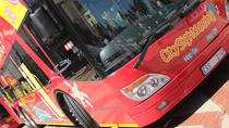 San Antonio Super Saver: Hop-On Hop-Off Bus Tour, Tower of Americas, Museum Admission, and More,...