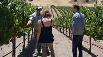Private Winemaker's Wine Tour of Santa Barbara and Santa Ynez Valley, Santa Barbara