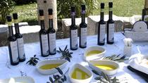 Olive Oil and Wine Tasting from Split, Split, Wine Tasting & Winery Tours