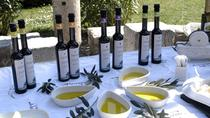 Olive Oil and Wine Tastings in Split, Split, Wine Tasting & Winery Tours