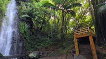 St Vincent Hiking Tour to Dark View Falls, St Vincent and the Grenadines, Hiking & Camping