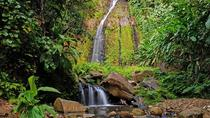 St. Vincent Hiking Tour to Dark View Falls, St Vincent and the Grenadines, Hiking & Camping
