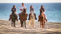 Horseback Riding Tour in Los Cabos, Los Cabos, Horseback Riding