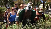 Catalina Island Scavenger Hunt Adventure, Catalina Island, Self-guided Tours & Rentals