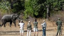 13 DAYS LOWER ZAMBEZI, KAFUE AND SOUTH LUANGWA NATIONAL PARK SAFARI, Zambia, Attraction Tickets
