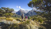 Full-Day Routeburn Track Key Summit Guided Walk from Te Anau, Te Anau, Hiking & Camping
