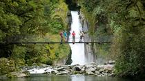 Half-Day Milford Track Guided Hiking Tour, Fiordland & Milford Sound, Hiking & Camping