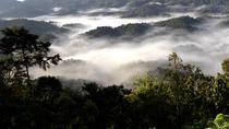 3 days Nyungwe Camping safari, Kigali, Hiking & Camping