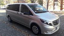 PRIVATE TRANSFER BY MERCEDES CAR MINIVAN, Poznan, Bus & Minivan Tours