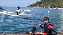 Cebu Whalesharks Snorkelling Tour, Cebu, Day Trips