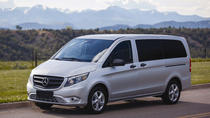 Private Arrival Transfer from Nice Airport via Minivan, Nice