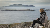 Private Guided Tour of Dingle Peninsula from Tralee, Tralee, Private Sightseeing Tours