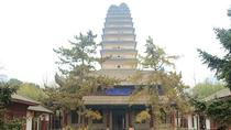 3 Days Xian Highlight Small Group Tour, Xian, Multi-day Tours