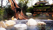Half Day Xian Luxury Tour: Hot Spring & Local Banquet Themed with Qin Culture, Xian