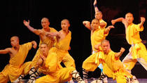Luoyang One Day Private Tour of Shaolin Temple and Longmen Grottoes Including Lunch, Luoyang, ...