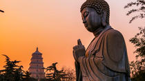 Xi'an Private Tour: Terracotta Warriors and Big Wild Goose Pagoda Day Tour, Xian, Air Tours