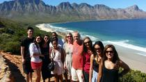 6-Day Garden Route and Addo South African Adventure from Cape Town, Cape Town, Multi-day Tours