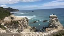 Beautiful Nature Tours Auckland, Auckland, Private Sightseeing Tours