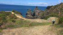 Stunning Auckland East Coast Walk & Wine Private Tour, Auckland, Private Sightseeing Tours