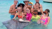 Grand Cayman Combo Tour: Stingray City and Turtle Farm, Cayman Islands, Snorkeling