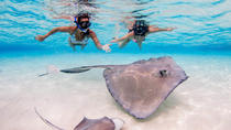 Stingray City, Starfish, Reef Snorkel & Beach - Perfect for cruise ship visitors, Cayman Islands,...