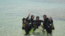 Discover Scuba Diving and Snorkeling Adventure in Mykonos, ミコノス島