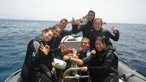 Snorkeling Adventure Trip, Mykonos, Snorkeling