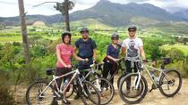 Guided Bike Tour of Stellenbosch, Stellenbosch