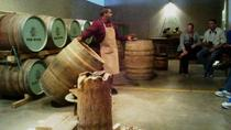 Vine Hopper: Hop-On Hop-Off Wine Tour - Southern Route, Stellenbosch