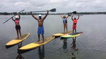 2-Hour Paddleboard or Kayak Rental on Paddleboard in Winter Park, Orlando, Kayaking & Canoeing