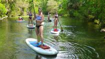 Wekiva Spring Stand Up Paddleboard and Swim, Orlando, Stand Up Paddleboarding