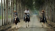 Day Trip to Hacienda La Danesa with Horseback Riding and Lunch, Guayaquil, Day Trips
