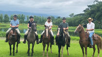 Private 'Hacienda La Victoria' Day Trip from Guayaquil Including Lunch, Guayaquil, Day Trips