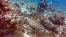 3-Day SSI Open Water Scuba Diving Course in Curacao, Curacao, Scuba Diving